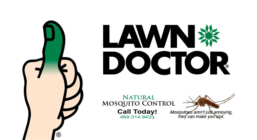 lawn-doctor-Rockwall-tx.jpg