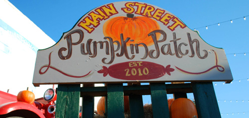 Pumpkin Patch | Downtown Royse City @  Downtown Royse City