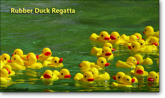 Rubber Duck Regatta @ The Rockwall Harbor