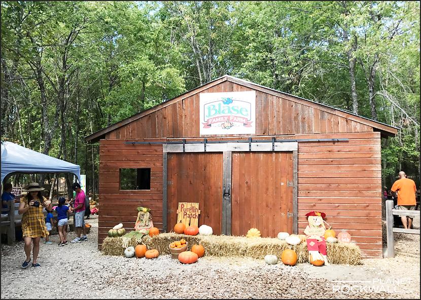 Blase Family Farm Rockwall