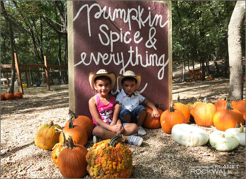 Pumpkin Patch Kids Rockwall TX